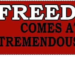 Freedom Comes at a Tremendous Cost Bumper Sticker