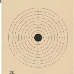 TQ-40 - Air Rifle (BB Gun) Target - 5 Meter Range Official NRA Target- (Pack of 100)