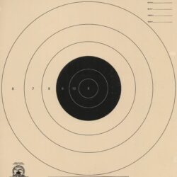 B-5 - 20 Yard Timed and Rapid Fire Pistol Target Official NRA Target