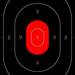 Silhouette Target Center Replacement for the NRA B-27 Target- Red Center Rendition (Pack of 100)