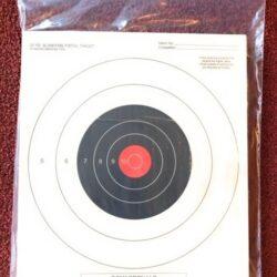 9 X 12 Target Storage Bag
