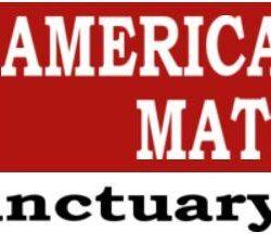 American Lives Matter Bumper Sticker