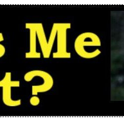 Miss Me Yet- Trump Bumper Sticker