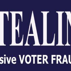 Stealing Joe Bumper Sticker- Anti Joe Biden Bumper Sticker